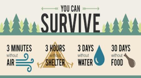 survival2450250